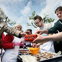 Nederland, Amsterdam , 29 juni 2013.<br /> Op 29 juni maken we een lunch voor 5.000 mensen op het Museumplein, uiteraard gemaakt van vers voedsel dat in Nederland om verschillende redenen niet op ons bord belandt. Damn Food Waste vraagt hiermee aandacht voor het wereldwijde probleem van voedselverspilling. Ook in Nederland verspillen we ongeveer één derde van ons voedsel! Dit gaat om zo'n 4,4 miljard euro per jaar dat onnodig de vuilnisbak in verdwijnt.<br /> Om te laten zien hoeveel voedsel er in Nederland wordt verspild, serveert Damn Food Waste op 29 juni op het Museumplein in Amsterdam voor zeker 5.000 mensen een lunch. Er komt een grote berg verse groenten, die ons bord anders nooit bereikt zouden hebben om cosmetische of andere redenen: te krom, te klein, te groot, gek gevormd of uit een beschadigde of verkeerd gelabelde verpakking. Die groenten worden ter plekke in veldkeukens verwerkt tot een heerlijke soep waar 5.000 mensen gratis van kunnen eten tussen 12.00 en 16.00 uur.<br /> Op de foto: koekjes van oud brood gebakken worden uitgedeeld.<br /> Foto:Jean-Pierre Jans