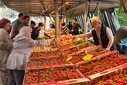 Strawberries for sale at a stall at Boxhagener Platz Farmers' Market at  the weekend in Friedrichshain Berlin Germany