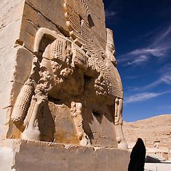 Tourist in Persepolis, Iran