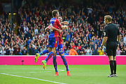 Crystal Palace defender Damien Delaney (27) celebrates Crystal Palace midfielder Joe Lesley (16) goal during the Premier League match between Crystal Palace and Stoke City at Selhurst Park, London, England on 18 September 2016. Photo by Jon Bromley.