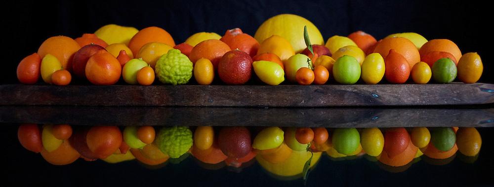 arizona citrus