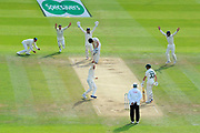 Wicket - Jack Leach of England traps Cameron Bancroft of Australia lbw during the International Test Match 2019 match between England and Australia at Lord's Cricket Ground, St John's Wood, United Kingdom on 18 August 2019.