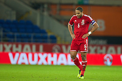 16.11.2013, Cardiff City Stadium, Cardiff, WAL, Fussball Testspiel, Wales vs Finnland, im Bild Wales' captain Ashley Williams looks dejected as Finland score, late equalising goal // during the international friendly match between Wales and Finland at the Cardiff City Stadium in Cardiff, Great Britain on 2013/11/17. EXPA Pictures © 2013, PhotoCredit: EXPA/ Propagandaphoto/ David Rawcliffe<br /> <br /> *****ATTENTION - OUT of ENG, GBR*****
