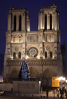 Notre Dame Cathedral lit up at night in Paris, France, Europe.