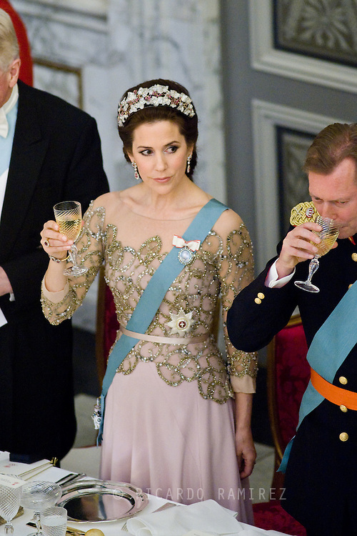 15.04.2015. Copenhagen, Denmark.Crown Princess Mary during a Gala Dinner at Christiansborg Palace on the eve of The 75th Birthday of Queen Margrethe of Denmark.Photo:© Ricardo Ramirez
