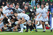 Cardiff Blues outside half Steve Shingler (10)  during the Heineken Champions Cup match between Glasgow Warriors and Cardiff Blues at Scotstoun Stadium, Glasgow, Scotland on 13 January 2019.