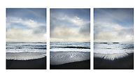 Gold Bluffs Beach Triptych, Prairie Creek Redwoods State Park, California