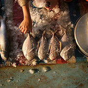 """A woman prepares her fish at Duong Dong Market on Phu Quoc Island, Vietnam. Phu Quoc is Vietnam's newest beach destination, just a 50 minute flight away from Ho Chi Minh City. With its proximity closer to the Cambodian mainland than to Vietnam, it was a launching pad for thousands of """"Boat People"""" refugees during the 1970s and 1980s, and has a strong military presence. However, with tourism in Vietnam booming, the government has opened up this largely agricultural and fishing island to foreign tourists, who can now enjoy sunsets on the only beaches in Vietnam that face west."""