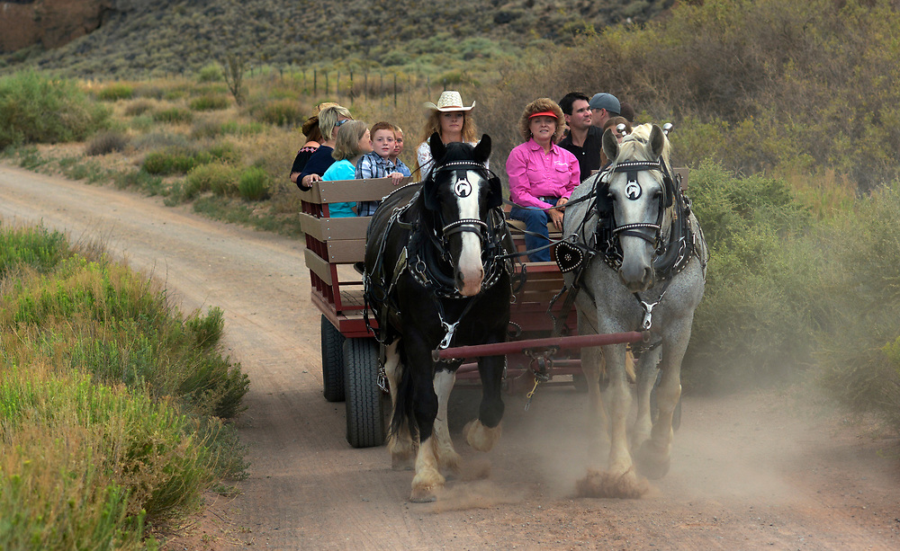 gbs072017h/RIO-WEST  -- Jasmine Rodriguez of Rio Rancho, center left, Terri Branden of Rio Rancho, center right, sit int he drivers seat transporting a wagon full of hotel quests to the Summer Rodeo Series at the Stables at Tamaya on Thursday, July 20, 2017.(Greg Sorber/Albuquerque Journal)