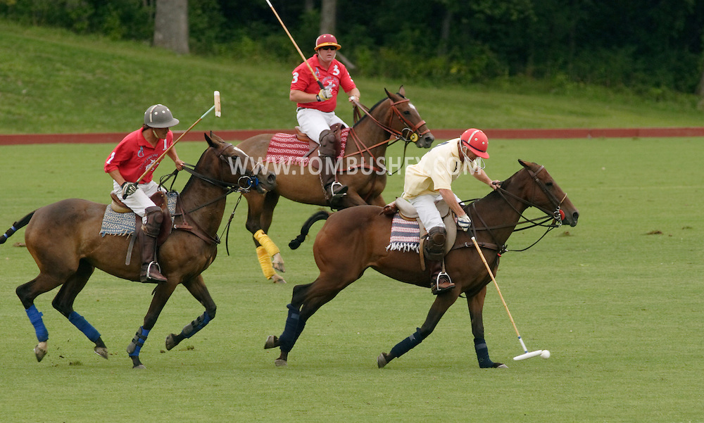 Town of Wallkill, NY - Players race after the ball during a polo match at the Blue Sky Polo Club on Aug. 19, 2007.