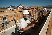 PRICE CHAMBERS / NEWS&amp;GUIDE<br /> Carpenter Mike Melf uses a hammer to help a wall settle in as a team of volunteers help Lisa Wolfgang spend one of many Saturdays constructing her family's new home.