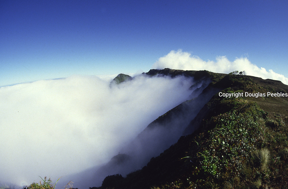 Summit of Mt Waialeale, Kauai, Hawaii<br />