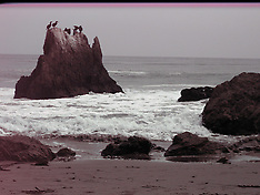 el matador state beach with a broken camera