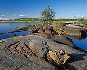 Shallow Lake.                   East side of Lake Winnipeg. Manitoba. Proposed Unesco World Heritage site.