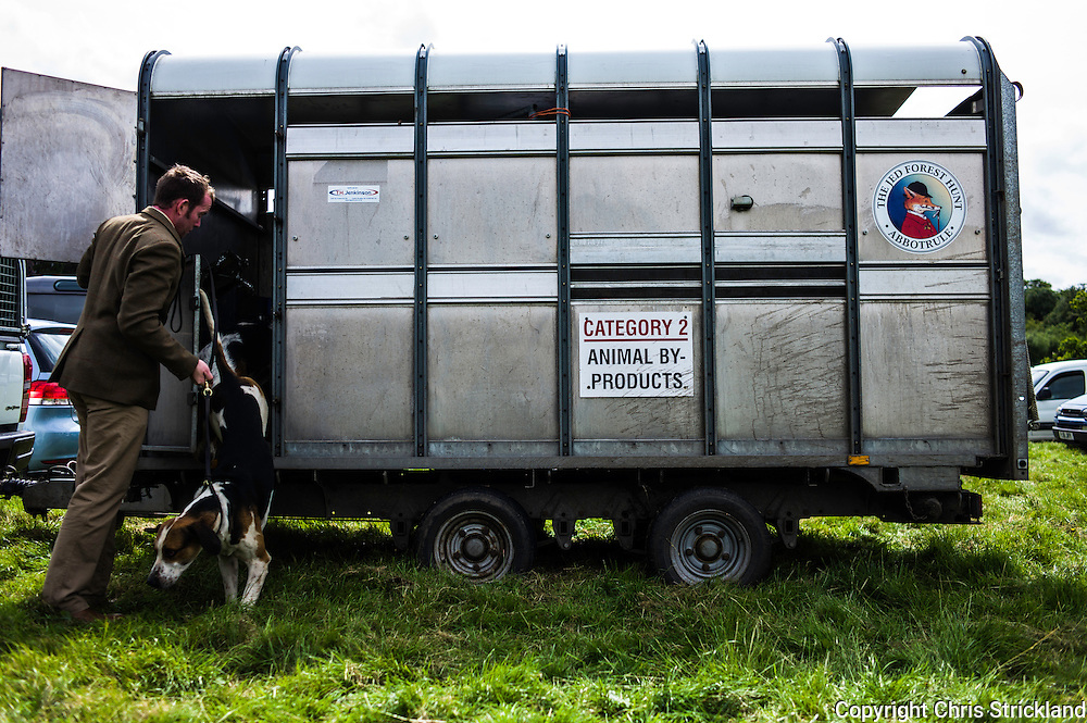 The Wells, Bedrule, Bonchester Bridge, Hawick, UK. 26th July 2015. Hounds of the Jedforest Hunt with hunt staff getting ready to go into the showing ring for judging.
