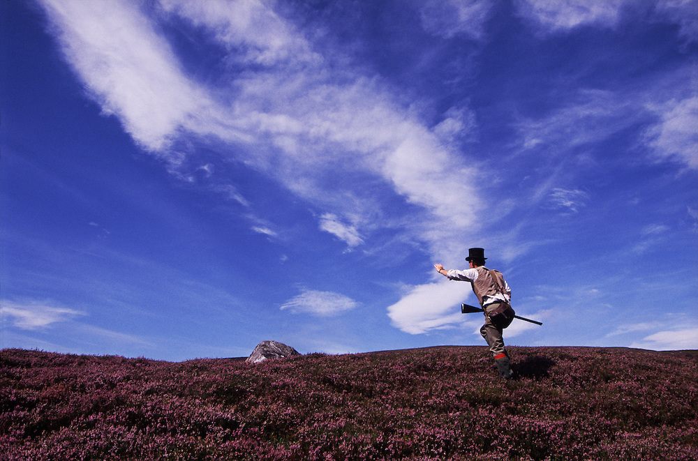 On the Balavil Estate in Scotland, hunters hike across the heather in pursuit of grouse.
