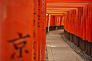 Fushimi Inari Temple Japan