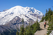 See the Emmons Glacier on icy Mount Rainier from Glacier Overlook near Sunrise Camp, a walk of 5 miles round trip with 1200 feet gain via First Burroughs Mountain, in Mount Rainier National Park, Washington, USA. For more vigorous training, hike the Burroughs Mountain 10 mile loop, with 3200 feet ascent from White River Campground up Glacier Basin Trail and back via Shadow Lake. Global warming and climate change: Mount Rainier's glaciers shrank 22% by area and 25% by volume between 1913 and 1994 in conjunction with rising temperatures (Nylen 2004). As of 2009, monitored glaciers are continuing to retreat (NPS). Over the last century, most glaciers have been shrinking across western North America (Moore et al. 2009) and the globe (Lemke et al. 2007) in association with increasing temperatures.