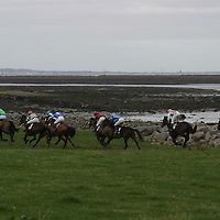 A view of the course during the fourth race at the Bellhabour point to point which was held over the weekend.<br />