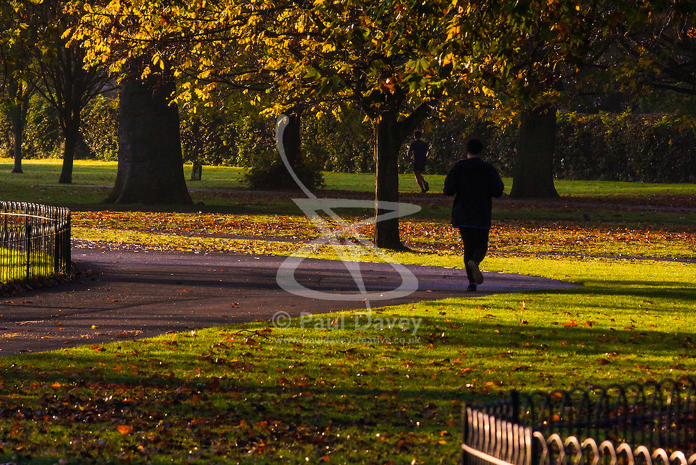Regent's Park, London, November 4th 2014. A runner makes his way through Regents Park as the autumn sun greets Londoners.