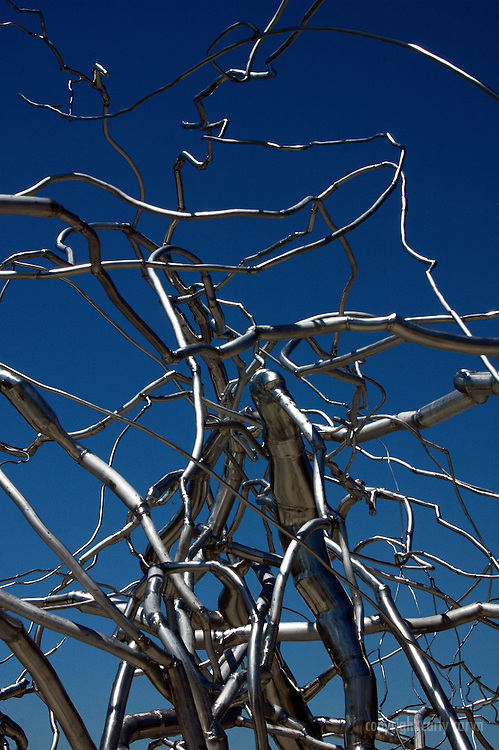 Roxy Paine sculpture