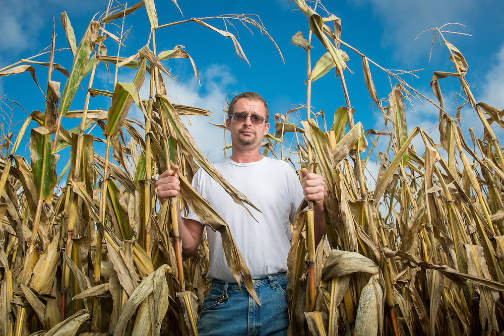 Farmer standing in cornfield in Millerstown, Pennsylvania, USA