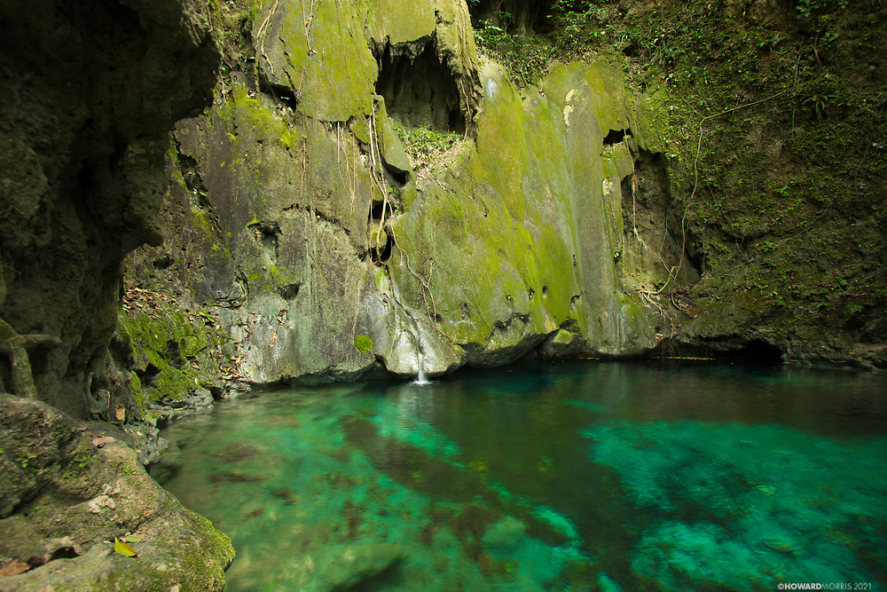 Crystal clear water pools in the limestone deep in the jungles of the Raspacullo river, Belize.