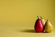 Two green pears and one red pear on a yellow background.
