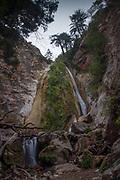 Limekiln Falls, Limekiln State Park, Big Sur, California, US