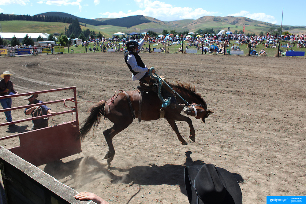 Cowboy's in action during the Millers Flat Rodeo. Otago, New Zealand. 26th December 2011