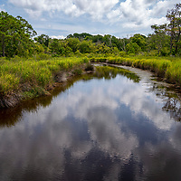 Currituck National Refuge in the Corolla section of the Outer Banks, North Carolina, USA