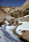 Utah: Zion National Park