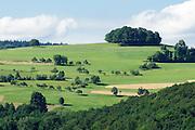 Landschaft am Gumpener Kreuz bei Fürth, Odenwald, Hessen, Deutschland