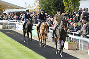 Former Racehorses in the Parade Ring courtesy of New Beginnings prior to the Bet365 Meeting at Wetherby Racecourse, Wetherby, United Kingdom on 3 November 2018. Picture by Mick Atkins.