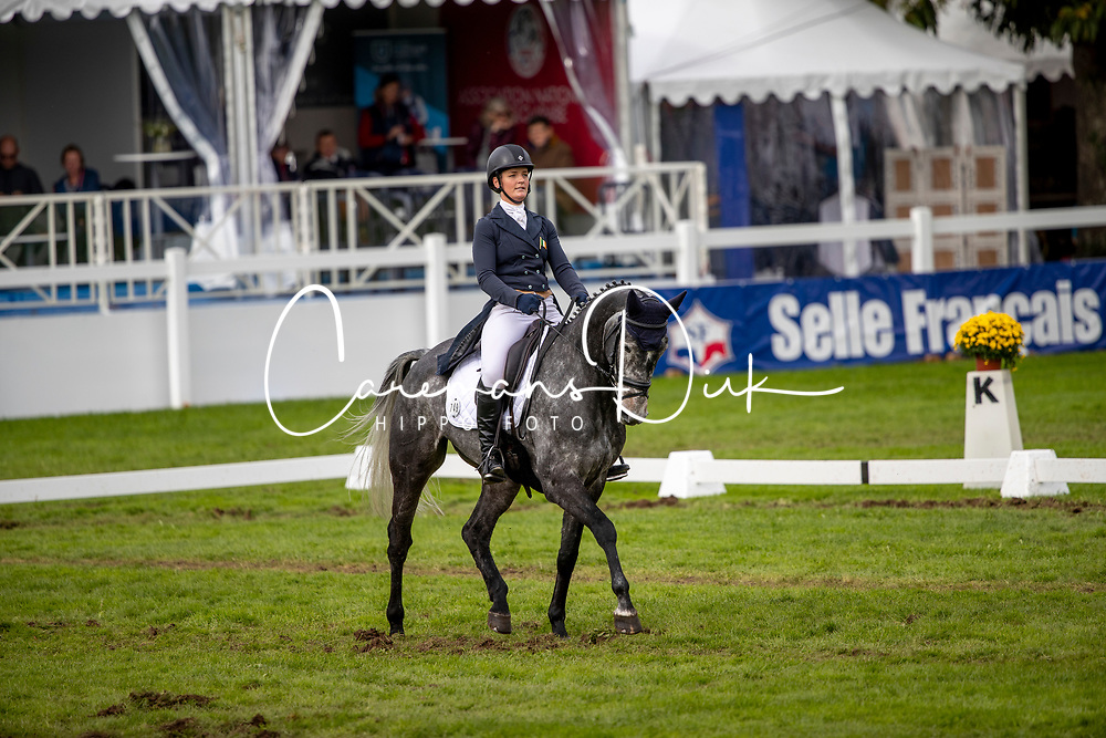 Power Elizabeth, IRL, Azure<br /> Mondial du Lion - Le Lion d'Angers 2019<br /> © Hippo Foto - Dirk Caremans<br />  18/10/2019