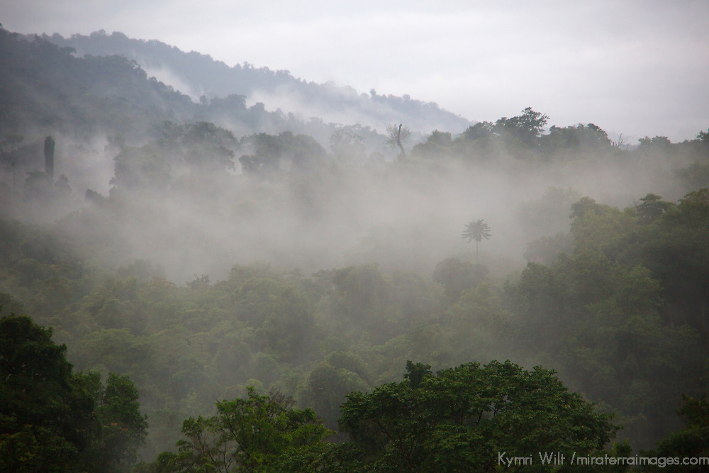 Central America, Costa Rica, Drake Bay. Corcovado Rainforest - view from Drake Bay Getaway.