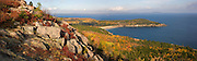 A fall scene atop the Gorham Mountain trail, showing the coastline and colors of decidous trees and the blueberry and huckleberry bushes. Taken in Acadia National Park, Maine, USA
