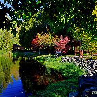 Japanene Garden, Sequim, WA<br /> edited 12/8/17, 1st printed 2/12/18