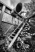 Nature slowly reclaims this  stairway and building at an abandoned furniture factory in Lexington, North Carolina