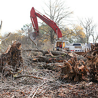 Adam Robison | BUY AT PHOTOS.DJOURNAL.COM<br /> A worker for Enscor Construction out of Arlington Tennesse, drives a backhoe excavator through the lot at the corner of Joyner Ave and Jackson Street as they work to remove trees.