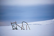 Dogsled in the snow, beside Mushamna hunters cabin, in Woodfjorden, Svalbard