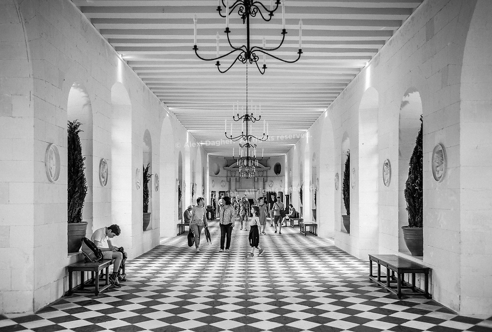 Chenonceau Castle  Ballroom Hall - Chenonceau, Loire Valley, France, July 2017