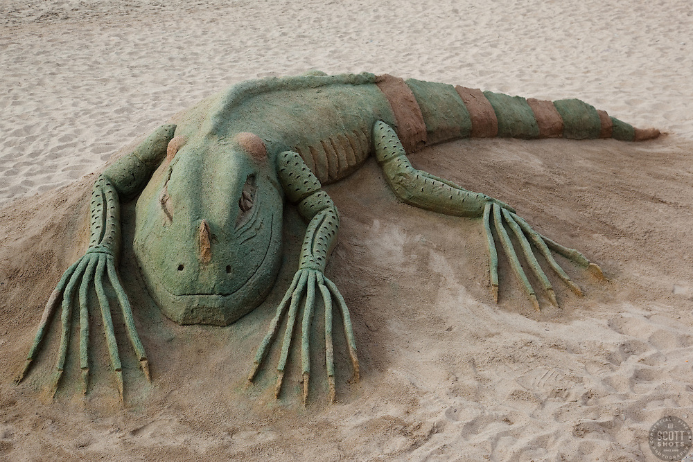 """Sand Iguana in Puerto Vallarta"" - This iguana made of sand was photographed on the beach in Puerto Vallarta, Mexico."