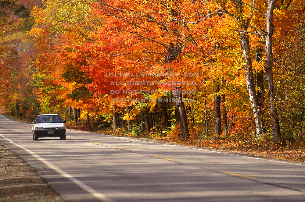 Image of a car driving on a road in the White Mountains National Forest near Franconia Notch in the fall, New Hampshire, American Northeast