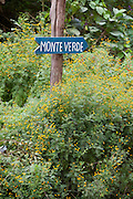 Goncalves_MG, Brasil...Placa de indicacao da cidade de Monte Verde em Goncalves...A sign for indicating Monte Verde town in Goncalves...Foto: LEO DRUMOND / NITRO.....