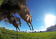 Hastings - Hunt Day Races