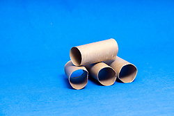 Empty cardboard tube from a roll of toilet tissue or toilet paper