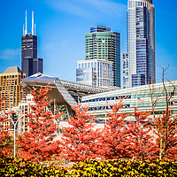 Picture of Chicago in autumn with Willis Tower (formerly Sears Tower), Soldier Field, and vibrant autumn colors.