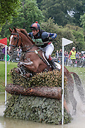 WILLOWS TIPSTER ridden by Ben Way at Bramham International Horse Trials 2016 at  at Bramham Park, Bramham, United Kingdom on 11 June 2016. Photo by Mark P Doherty.