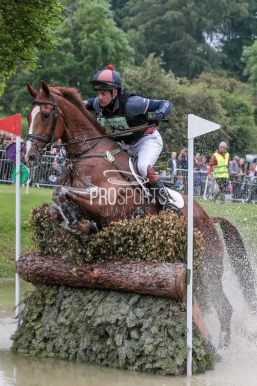 WILLOWS TIPSTER ridden by Ben Way at Bramham International Horse Trials 2016 at  at Bramham Park, Bramham, United Kingdom on 11 June 2016. Photo by Mark P Doherty.